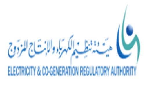 هيئة تنظيم الكهرباء والإنتاج المزدوج وظائف